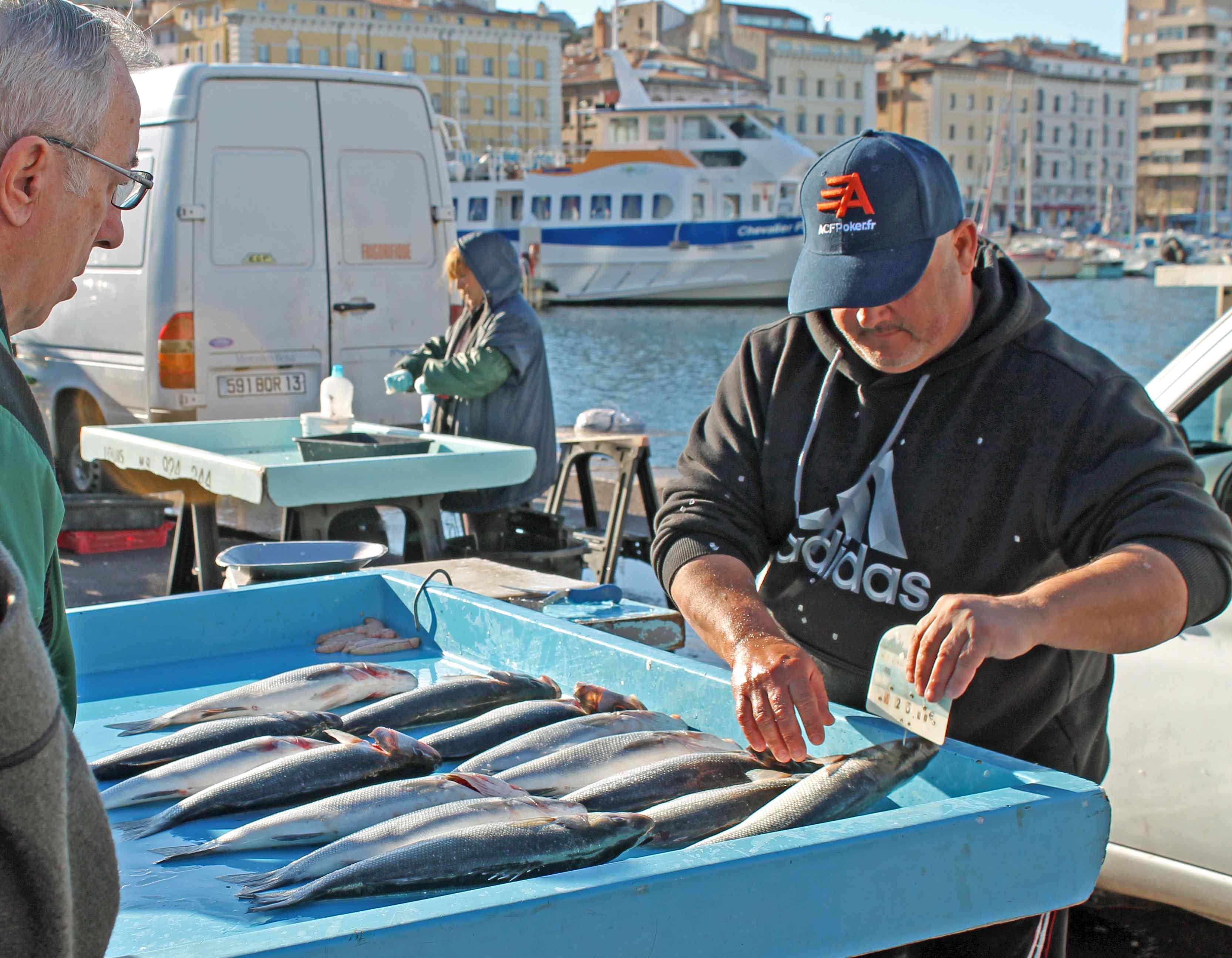 Fish Market in Marseille - Focal Journey