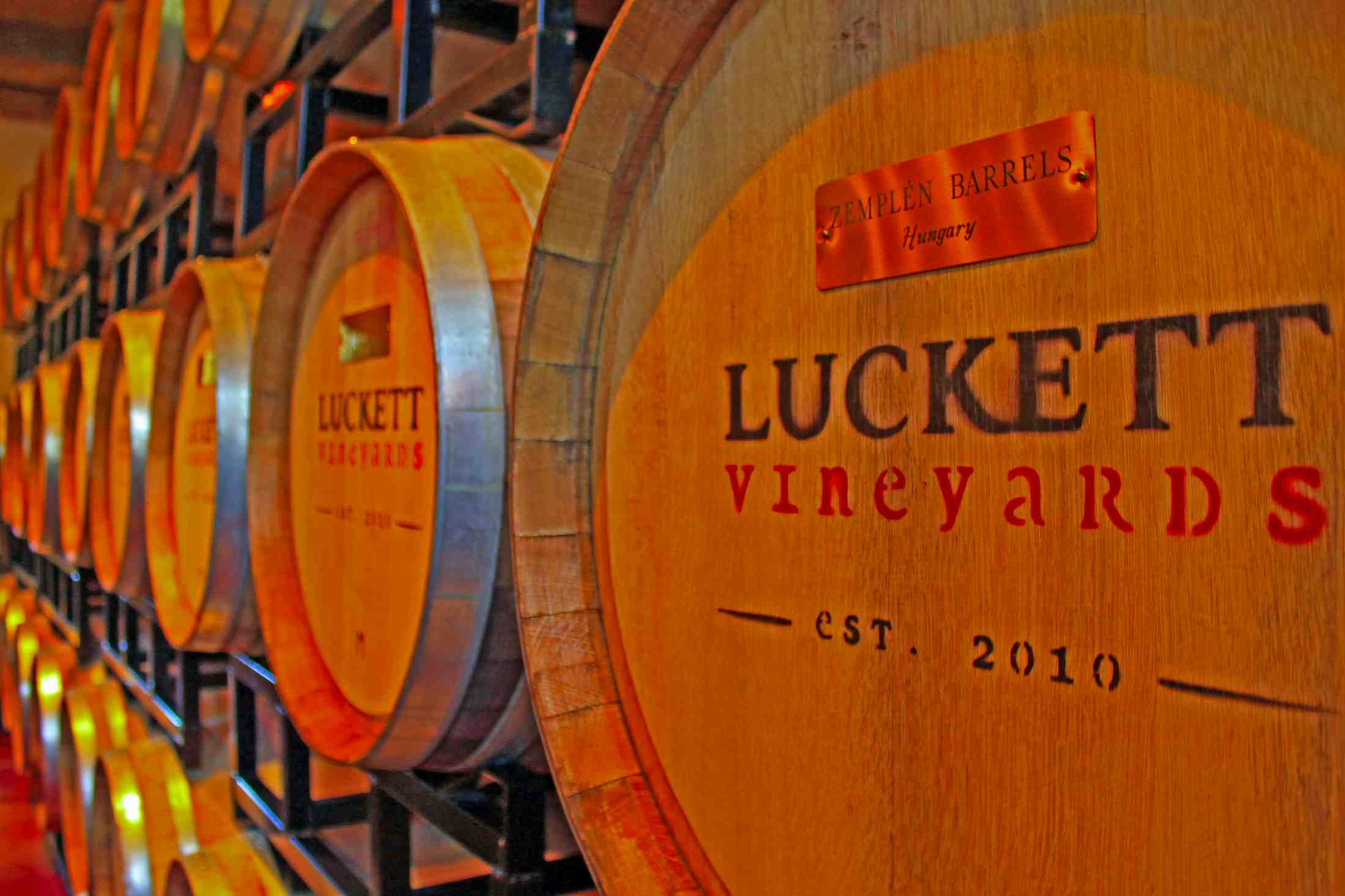 Luckett Vineyards - Focal Journey